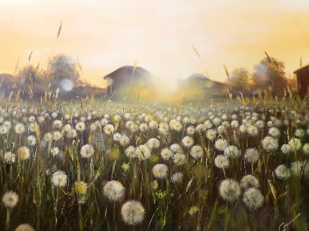 dandelion_field_by_piskunovsergey-d64b1fe