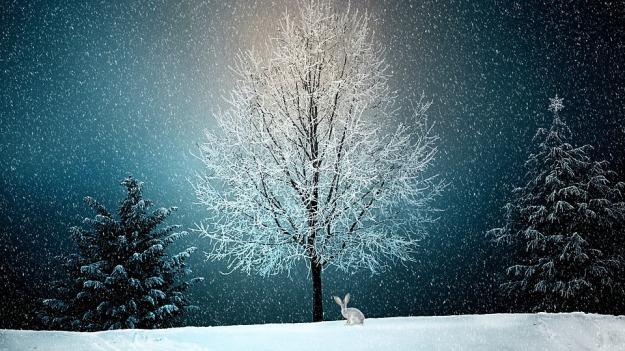 winter-2896970_960_720